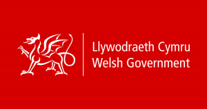 Double Glazing Grants 2020 Wales